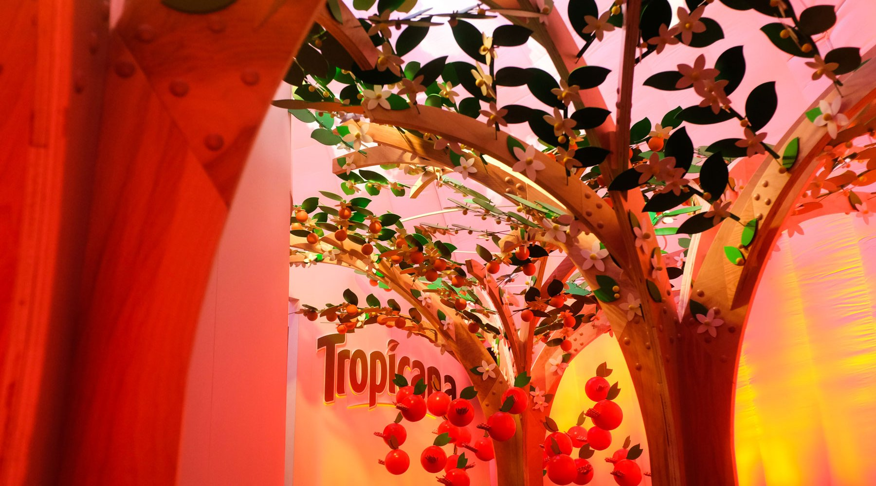 Make Luft Tropicana 13Web